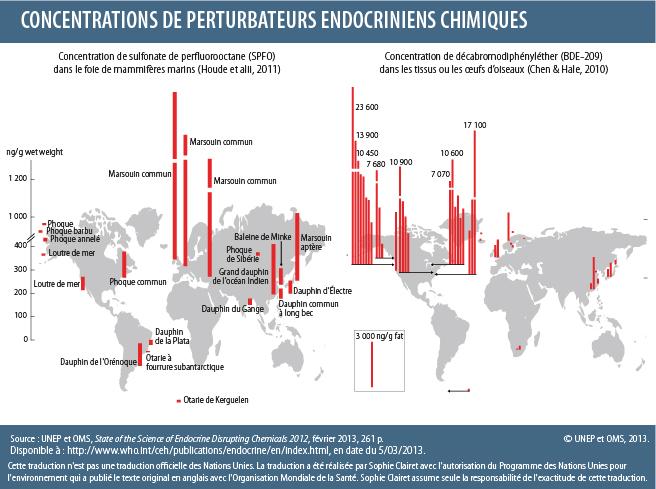 Concentrations de perturbateurs endocriniens chimiques